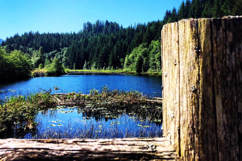 Brohm Lake Interpretive Forest Squamish BC